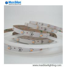 DC12V / 24V High Brightness Dimmable SMD LED Light Strip