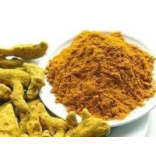 Hot Sale Turmeric Powder for Global Market