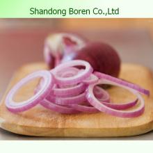 Export 2015 oignons frais chinois oignons originaux