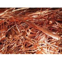 Moinho de sucata de cobre Sucata de arame de cobre Berry 99,99% Sucata de cobre
