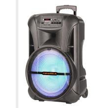 Altavoz portátil para exteriores de 15 pulgadas con micrófono inalámbrico