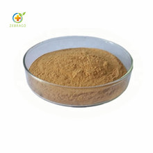 Pure Natural Dandelion Root Powder Plant Extract