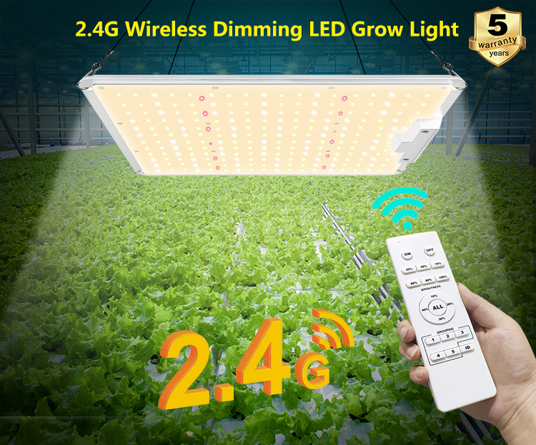 2.4G Wireless Dimming LED Grow Light 1
