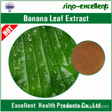 Extracto natural de folhas de banana