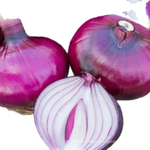 2021 Best Price High Quality Chinese Fresh Peeled Red/yellow Onion