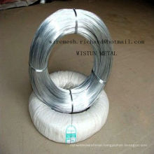Factory High Quality Electro Galvanized Binding Wire in Competitive Price