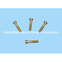 Bronze Bolts Brass Screw Copper Screw/Special Fastener