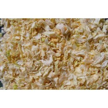 Cebola branca seca ao ar 10x10