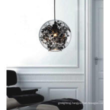 Stainless Steel Pendant Lamp with Glass Shade (MD8031-1)