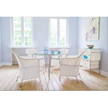 DS-(372) rattan indoor furniture modern rattan indoor dining table