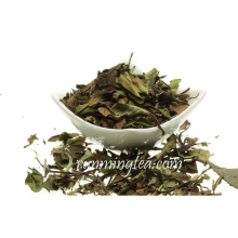 2016 Organic Best White Tea Marcas Té Blanco