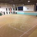 Rolled PVC Oak sport surfaces