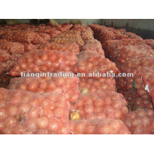 Red Shallot 2011 crop