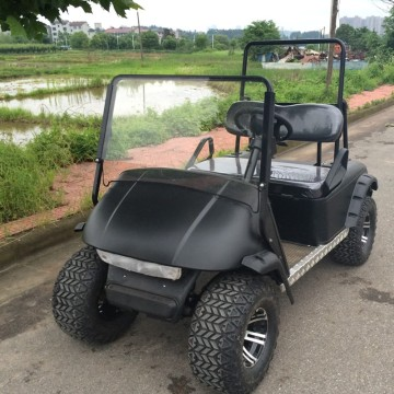 2 Seater Gas / Electric Golf Cart