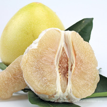 Hot Sale New Crop Low Price Natural Chinese Shaddock Honey Pomelo