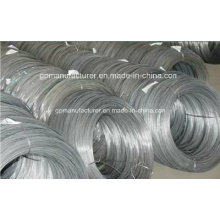Export High Quality Steel Wire