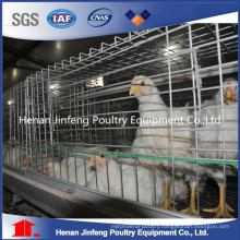 for Kenya Farm Automatic Broiler Chicken Cage Manufacture