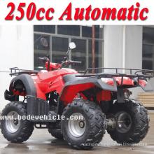 New 250cc Bode ATV Automatic Quad Bike (MC-356)
