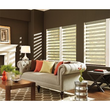 Double layer zebra blinds