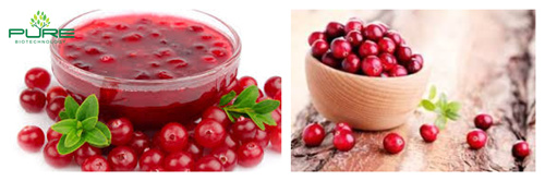 Natural Cranberry Extract With 25% Proanthocyanidins6