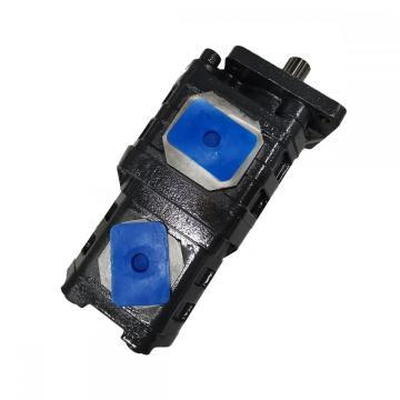 5310001 Bomba de engranajes para piezas de transmisión de caja de cambios