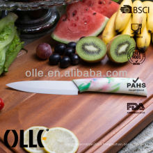 Soft Touch Watertransfer Printing Sushi Knife