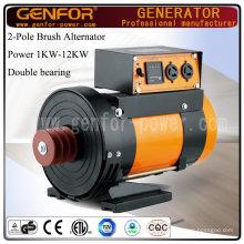 Alternateur à double roulement à 2 pôles de 12 kVA 3000 tr / min ou 3600 tr / min