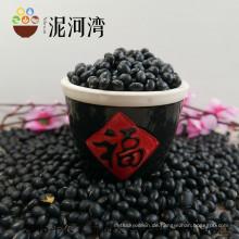 Qualitativ hochwertige schwarze Bohnenfarbe, poliert