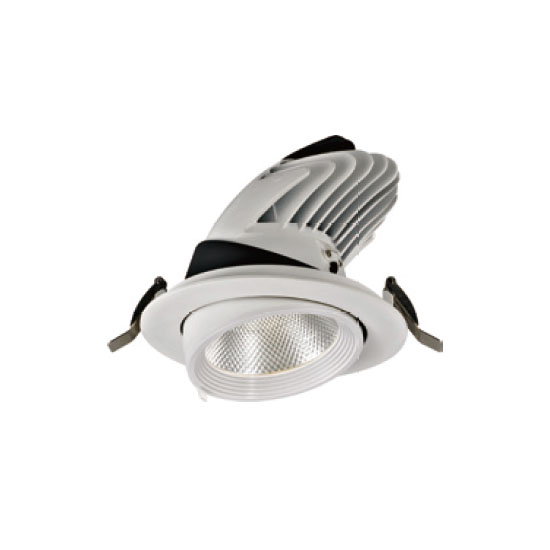 Essential Powerful 25W LED Downlight