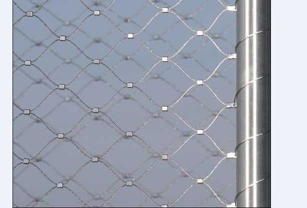 low price stainless steel wire rope netting