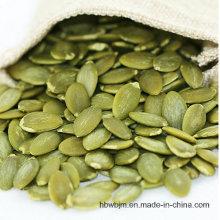 Novos grãos de semente de abóbora AA