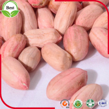 Long Type Red Skin Peanut Kernels 24/28