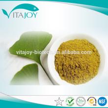 EP/USP Standard Ginkgo Biloba Extract Glycosides24%, Terpene Lacosides6%