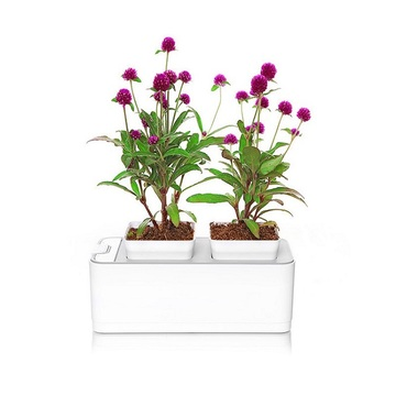 Indoor+Mocle+Flower+Pot+Grow+System
