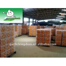 2011 Juicy Navel Orange