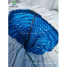 Cheap Blue PE/Polyethylene/PP/Polypropylene/Plastic/Fishing/Marine/Mooring/Twist/Twisted Danline Rope for Philippines