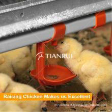 Bebedor automático do bocal das aves domésticas para a gaiola da galinha das aves domésticas