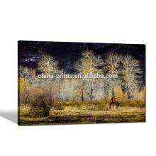 Impresión fotográfica de la impresión de la lona del paisaje natural / impresión de la foto del caballo en lona / nueva imagen de la pared