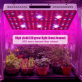 Interior Cree Cob LED Grow Light High Yield
