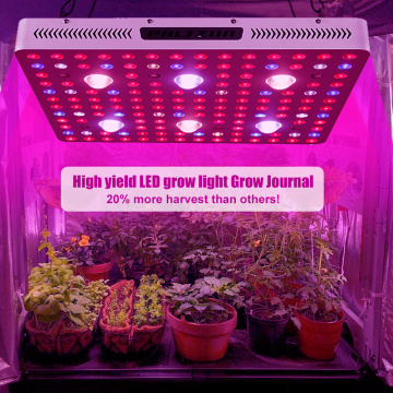 Indoor Cree Cob LED Grow Light High Yield