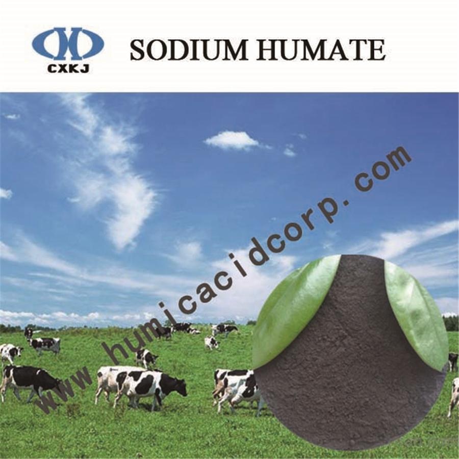 Sodium Humate For Animal Feed