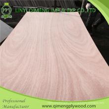 Linyi Konkurrenzfähiger Preis Okoume Türhaut-Sperrholz mit bester Qualität