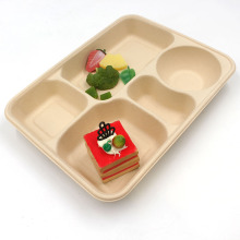 Divided Compostable Biodegradable Sugarcane Box Bagasse Food Container