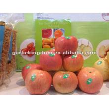 Manzana fresca fuji de cartón de 18kg para exportar