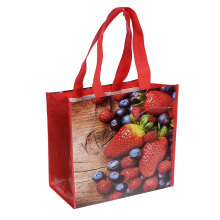 Customized Printing Laminated pp non Woven Bag Recyclable Eco Friendly Shopping Bag