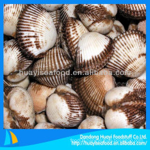 Frozen boiled blood clam meat