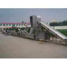 Máquina de processamento de legumes e frutas