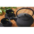 Chinese Cast iron teapot set