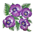 Delightful Garden's Best Delight Pansy bordir Patch