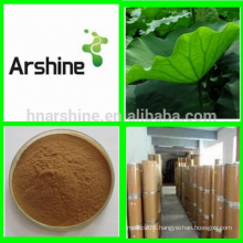 Herbal medicine weight loss Lotus leaf extract